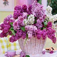 cestas con flores