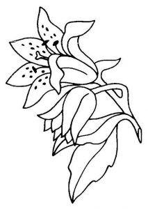 dibujos para pintar en tela flores