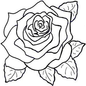 rosa para pintar y colorear
