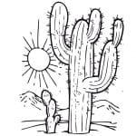 cactus en el desierto para colorear