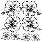 colorear flores hawaianas