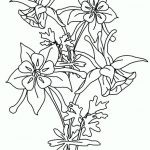 dibujo orquideas