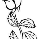 dibujo de una rosa para colorear