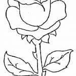 flor dibujo rosa infantil para pintar