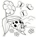 flor, mariposas y mariquita