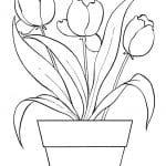 dibujo maceta de tulipanes