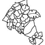 dibujo de ramo de claveles para colorear