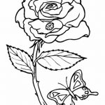 pequeña mariquita andando por una rosa y mariposa volando alrededor