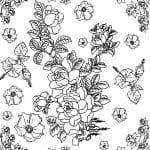 dibujo de rosas y narcisos para colorear