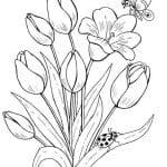 dibujo de tulipanes y mariposa