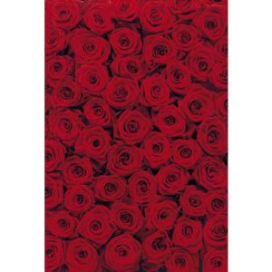 "Papel pintado ""rosas rojas""(4 unidades) 194 x 270 cm"