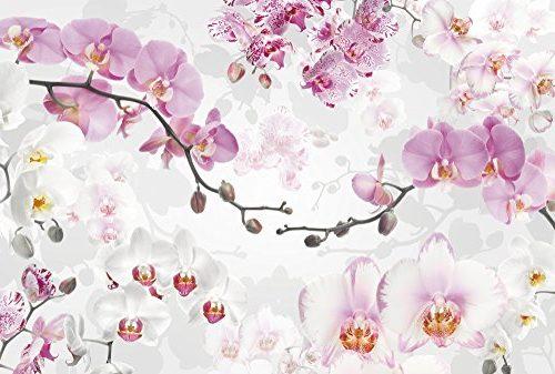 Mural Flor Orquídea (Pack de 4) 368 x 248 cm
