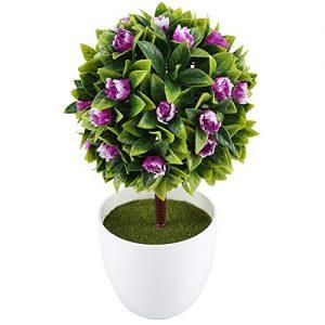 Macetas con flores defloresonline com for Plantas en macetas
