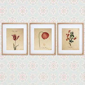 Pack de láminas Red One amapola