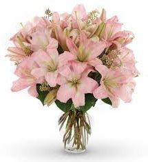 5 tallos de lilium rosas