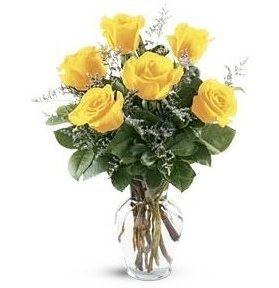 Ramos de rosas amarillas naturales