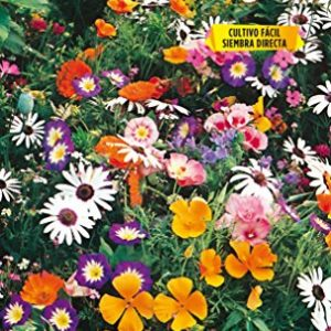 Mezcla de Flores enanas anuales