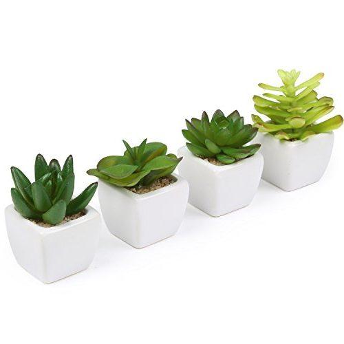 Set de 4 decorativas macetas mini para plantas