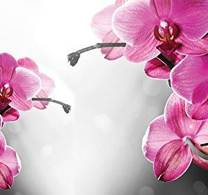 Fotomural de orquídeas sobre fondo gris