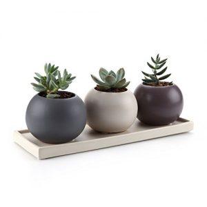 Vivero de cerámica