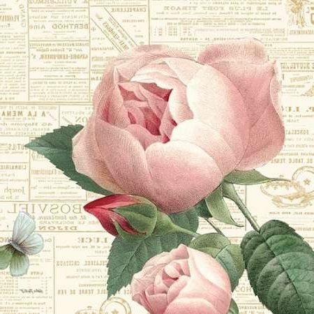 Lamina Roses Paris