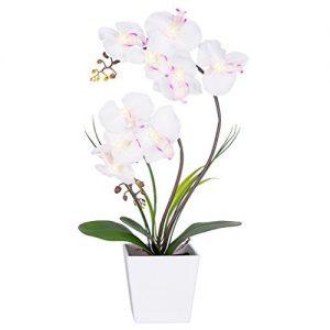 Maceta orquídeas con luz LED